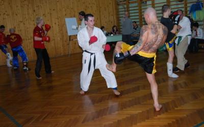 Küzdősport konferencia, összegzés  2013
