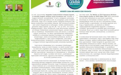 Érd Edző leszek 2017.január.16.  konferencia összefoglaló